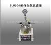 SLM500催化加氢反应器