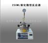 250ML催化微型反应器