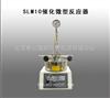 SLM10催化微型反应器