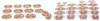 GD/A30003女性躯干断层解剖横切面模型