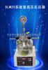 武汉直销SLM25实验室高压反应器