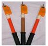 语言式高压声光验电器 交流验电器 语音验电器 声光验电器 高压验电器