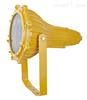 供应海洋王BTC8210 防爆投光灯 BTC8210-J400|福建防爆投光灯 厂家批发