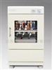 ZHWY-1102C双层小容量恒温摇床