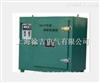 大量批发YGCH-X2远红外高低温程控焊条烘箱